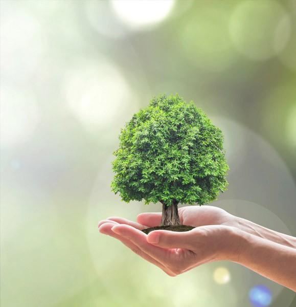 Protégez l'environnement